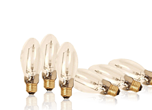 High Pressure Sodium Bulbs